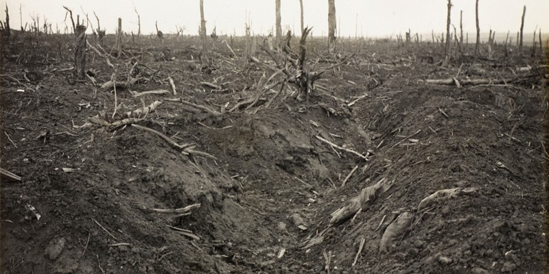 A destroyed German trench at Delville Wood near Longueval, September 1916