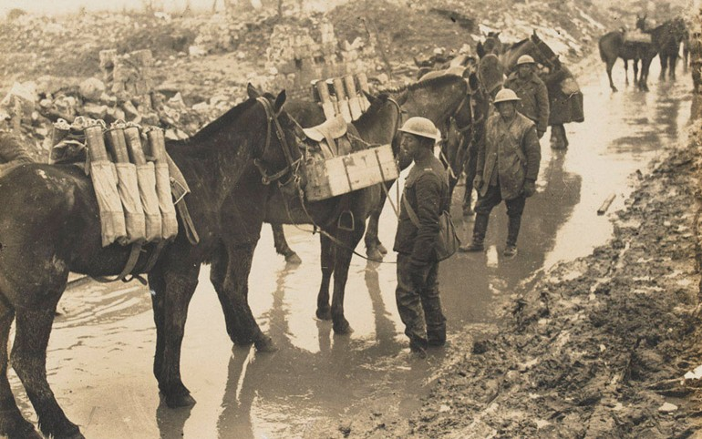 Horses carrying ammunition, c1917