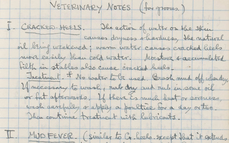Sassoon's notebook containing veterinary notes on how to care for horses, from January 1916