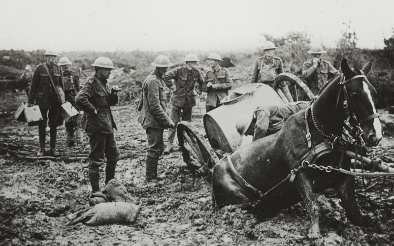 Horse-drawn water cart stuck in the mud, St. Eloi, 11 August 1917